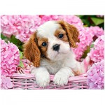 Puzzle  Castorland-018185 Welpe in pinken Blumen