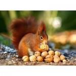 Puzzle  Castorland-018277 Squirrel in Paradise