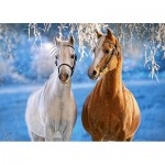 Puzzle  Castorland-27378 The Winter Horses