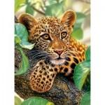 Puzzle  Castorland-30170 Tree Hugger