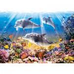 Puzzle  Castorland-51014 Die Welt der Delfine