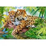 Puzzle  Castorland-52011 Jaguare am Fluss