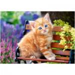 Puzzle  Castorland-52240 Rotes Kätzchen