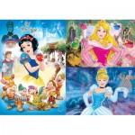 3 Puzzles - Disney Princess