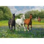 Puzzle  Clementoni-39255 Pferde auf der Weide