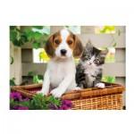 Puzzle  Clementoni-39270 Hund und Katze