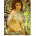 Puzzle  DToys-66909-RE04 Renoir: Nu dans le soleil