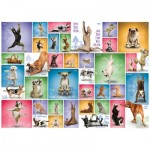 Puzzle  Eurographics-6000-0954 Yoga Dogs