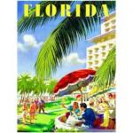 Puzzle  Eurographics-8000-0398 Florida
