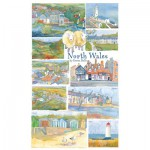 Puzzle  Gibsons-G2518 Emma Ball: North Wales