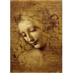 Puzzle  Grafika-Kids-00714 Magnetische Teile - Leonardo da Vinci: Gesicht der Giovane Fanciulla, 1508