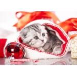 Puzzle  Grafika-Kids-01128 Weihnachtskätzchen