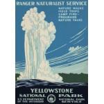 Puzzle  Grafika-00097 Yellowstone, USA, 1938