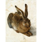Puzzle  Grafika-01709 Albrecht Dürer - Der Hase, 1502