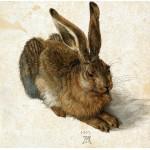 Puzzle   Albrecht Dürer - Der Hase, 1502