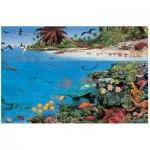 Puzzle  James-Hamilton-CS1/1054 Coral Sea Lagoon