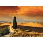 Puzzle  Jumbo-18362 Sonnenuntergang in der Toskana