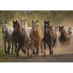 Puzzle  Jumbo-18541 Pferde