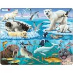 Larsen-FH11 Rahmenpuzzle - Tiere der Arktis