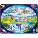 Larsen-NM6 Rahmenpuzzle - Tiere der Welt