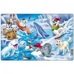 Larsen-U17-2 Rahmenpuzzle - Tiere der Arktis