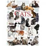 Puzzle  Cobble-Hill-51795 Die Katzen