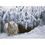 Puzzle  Cobble-Hill-51828 Robert Bateman - Dozing Lynx