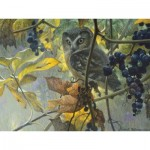 Puzzle  Cobble-Hill-52086 XXL Teile - Robert Bateman - Saw-whet Owl and Wild Grapes