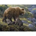 Puzzle  Cobble-Hill-54584 Robert Bateman: Familie Grizzly
