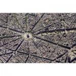 Puzzle  Piatnik-5376 Collection Skyview: Paris