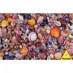 Puzzle  Piatnik-5663 Muscheln
