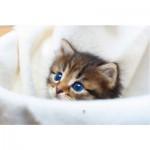 Puzzle-Michele-Wilson-M322-40 Puzzle aus handgefertigten Holzteilen - Willkommen kleine Katze