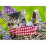 Puzzle  Ravensburger-10539 Schlafendes Kätzchen