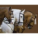 Puzzle  Ravensburger-16339 Pferde
