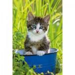 Ravensburger-94874-09430-03 Minipuzzle - Kätzchen im blauen Topf