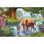 Puzzle  Schmidt-Spiele-56161 Pferde am Bach