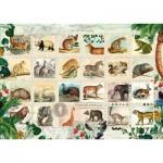 Puzzle  Schmidt-Spiele-58285 Tierische Briefmarken