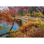 Puzzle  Schmidt-Spiele-58305 Spaziergang im Central Park, New York