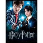 Wrebbit-3D-5002 Poster Puzzle - Harry Potter