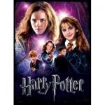Wrebbit-3D-5003 Poster Puzzle - Hermione Granger, Harry Potter