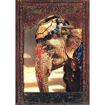 Puzzle  Bluebird-Puzzle-70061 Painted Lady With Frame