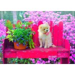 Puzzle   Puppy in the Colorful Garden