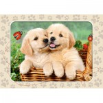 Puzzle  Castorland-06786 Golden Retriever
