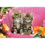 Puzzle   Kittens on Garden Chair