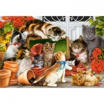 Puzzle   Kittens Play Time