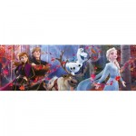 Puzzle   Disney Panorama Collection - Disney Frozen 2