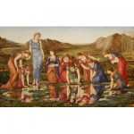 Puzzle  Dtoys-72733-BU-01 Edward Burne-Jones: The Mirror of Venus, 1875