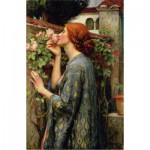 Puzzle  Dtoys-72757-WA04-(75062) Waterhouse John William: The Soul of the Rose