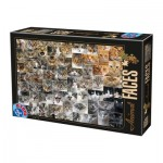 Puzzle  Dtoys-74331-AF02-(75260) Collage - Katzen