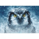 Puzzle  Dtoys-75727 Owl